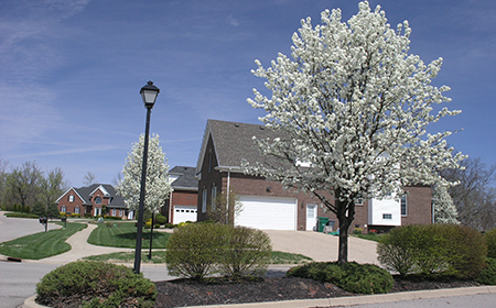 3-homeowner-street