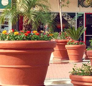 Shopping center planters