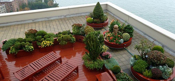 Rooftop Planters: Ideas On How To Create The Perfect Rooftop Garden on pillow ideas, plaque ideas, outdoor ideas, very cool science project ideas, retaining wall ideas, vase ideas, gardening ideas, truck ideas, white ideas, garden ideas, plate ideas, animal ideas, teapot ideas, lantern ideas, leather ideas, coffee table ideas, plant ideas, stand ideas, pot ideas, bird feeder ideas,