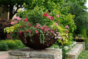 Potted Planter