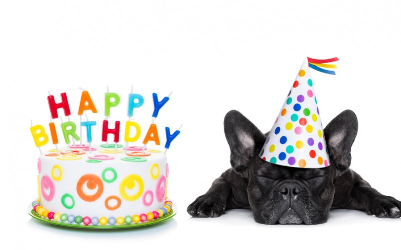 happy-birthday-bianca
