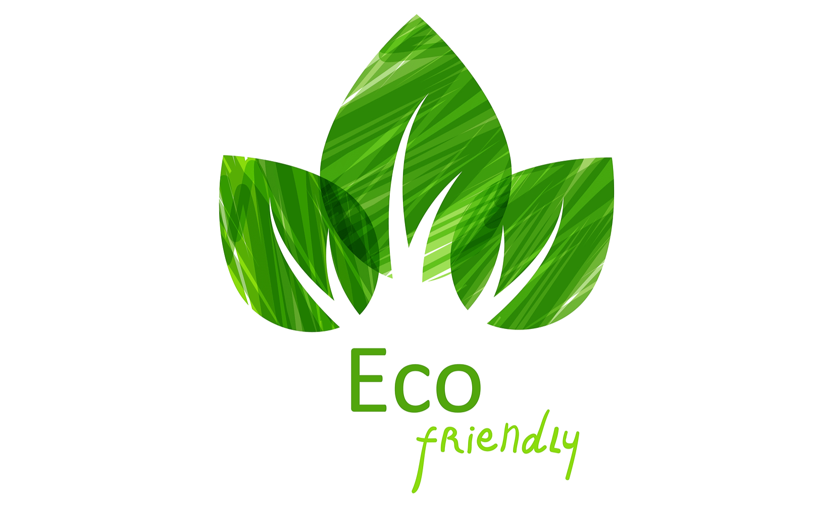 Eco friendly landscaping materials tips for landscape for Sustainable interior design products