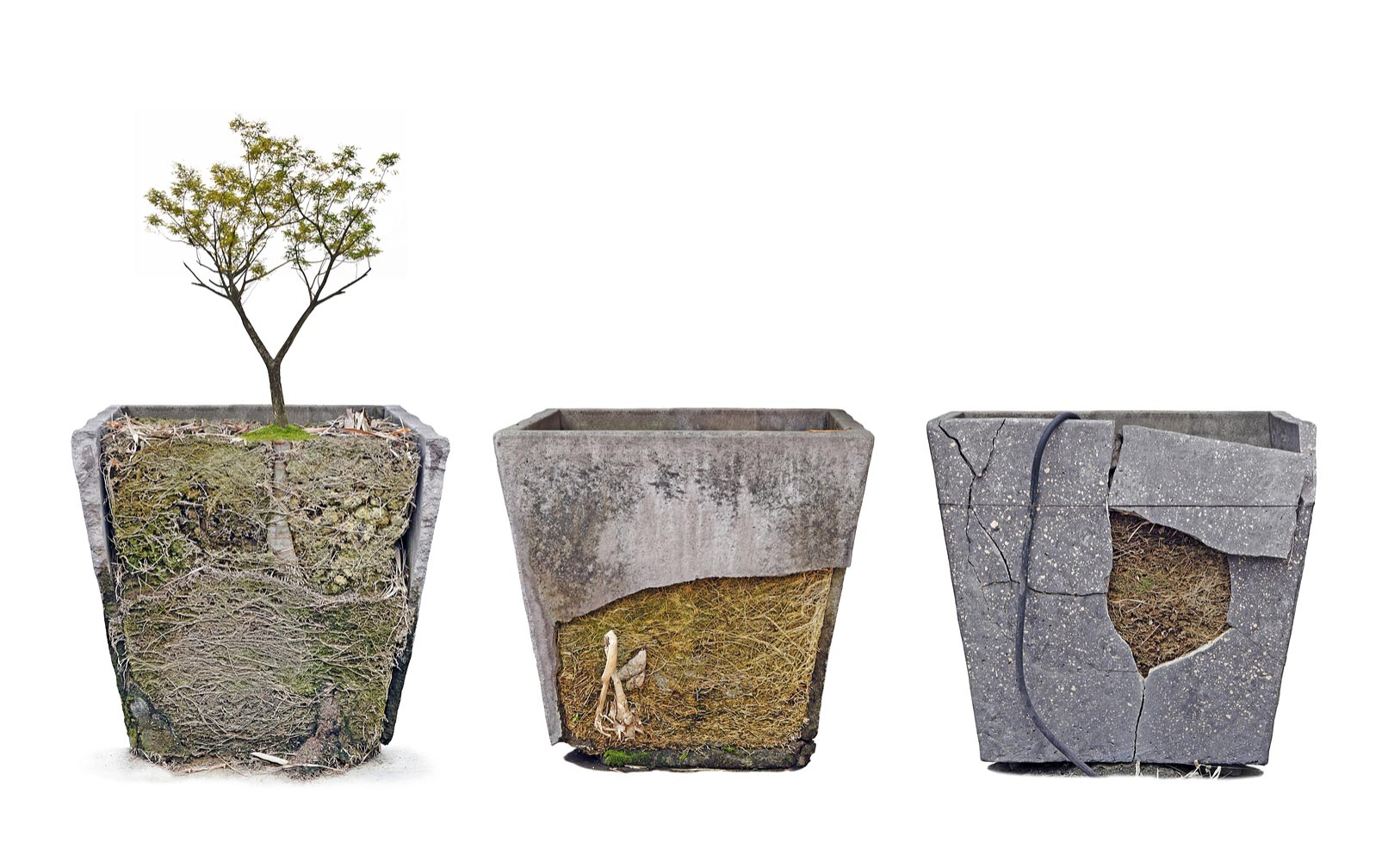 Are concrete planters sustainable concrete vs resin plantersterracast products - Casting concrete planters ...