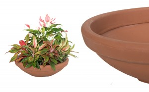 Low Bowl: TerraCotta