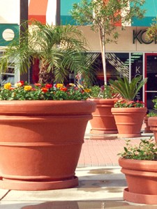 Shopping center planters