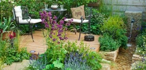 7 Tips For Growing Perennials In Pots