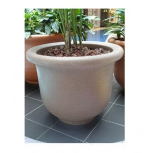 large planter with tree