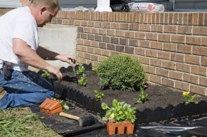 Landscaping Fails