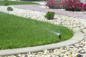 Water Landscaping Tips