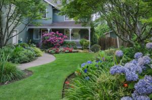 5 Basic Landscaping Design Tips