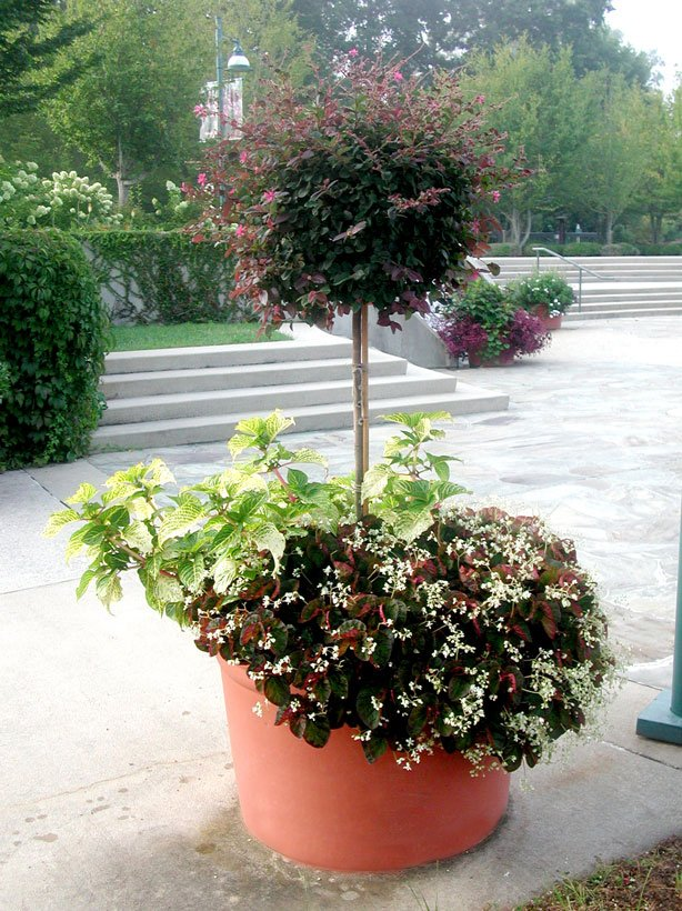 TerraCast Products & How To Create The Best Large Flower Pots On The Block