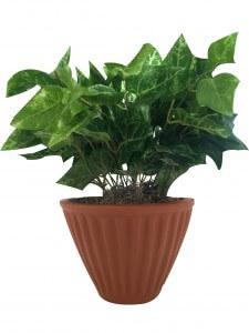 single vertical wall planter