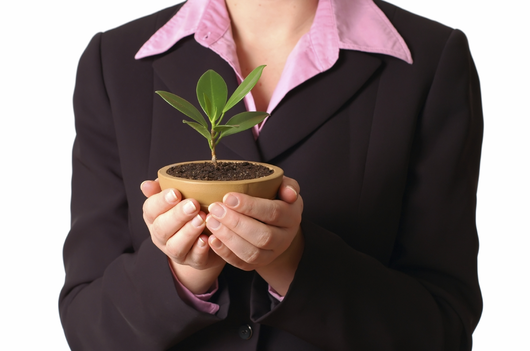 business woman holding a growing plant in her hands