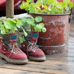 rust-planter-prevent