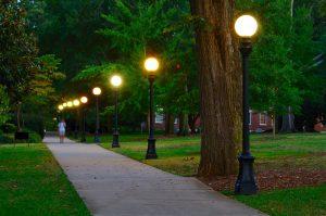 lamp post - campus landscape
