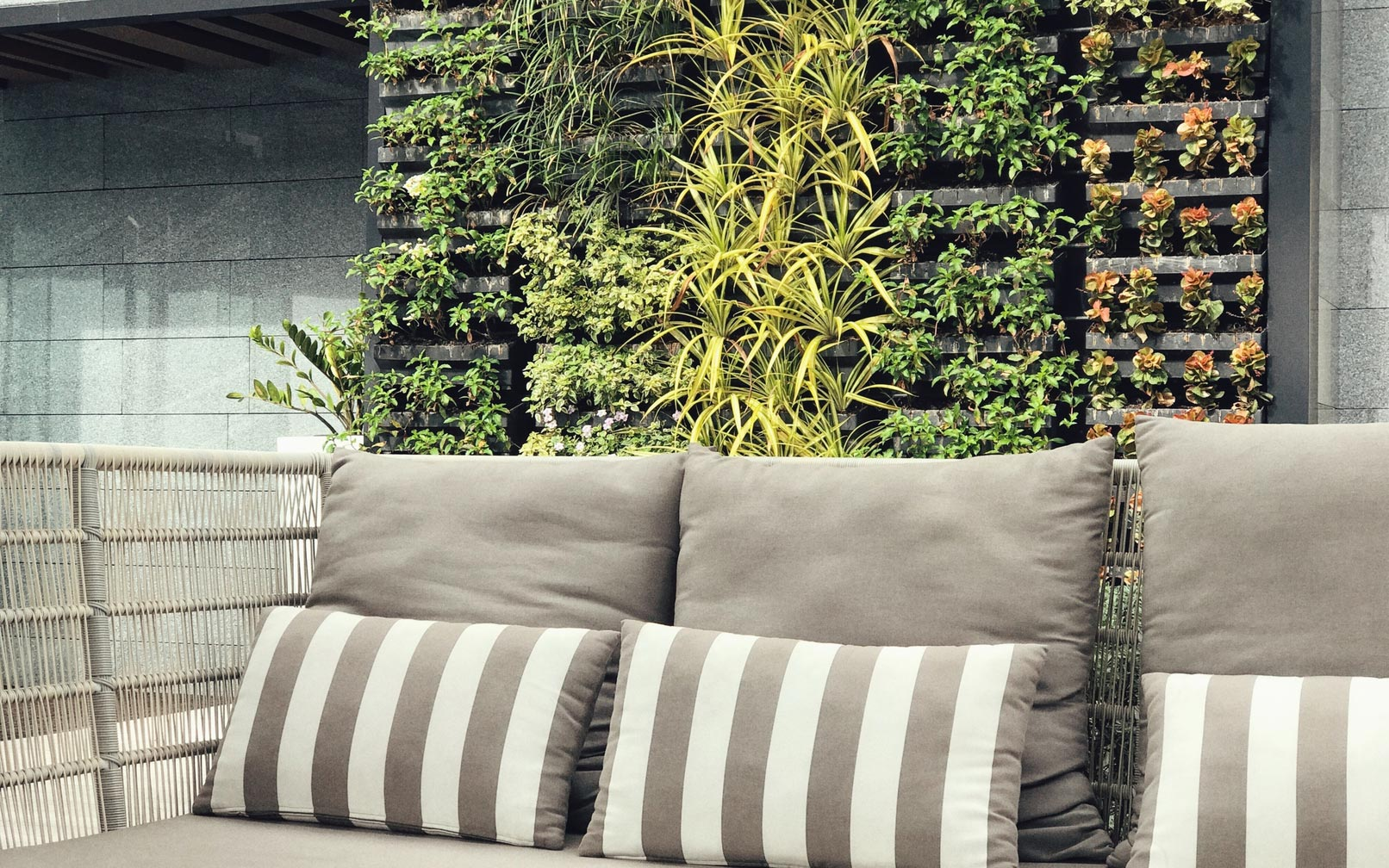 Wall Planters: 10 Tips For Creating Thriving Vertical Gardens