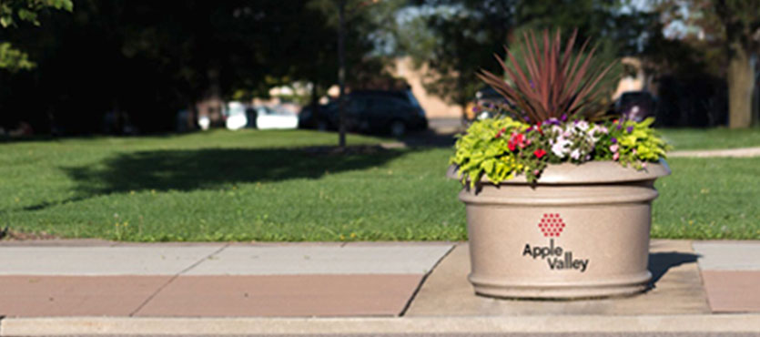 4 Creative Ways to Utilize Custom Graphics on Planters