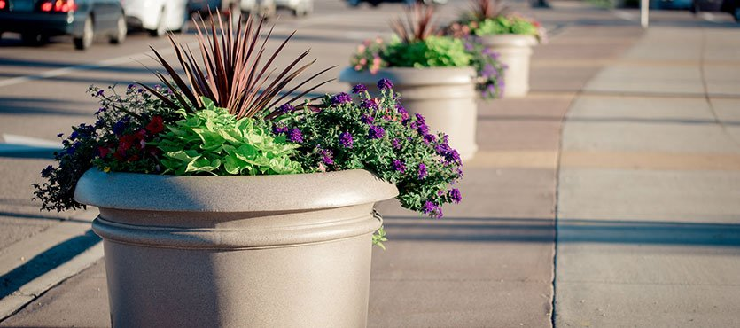 5 Tips to Make Planters Fuller and More Beautiful