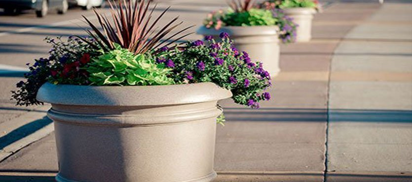 How to Choose the Best Planter