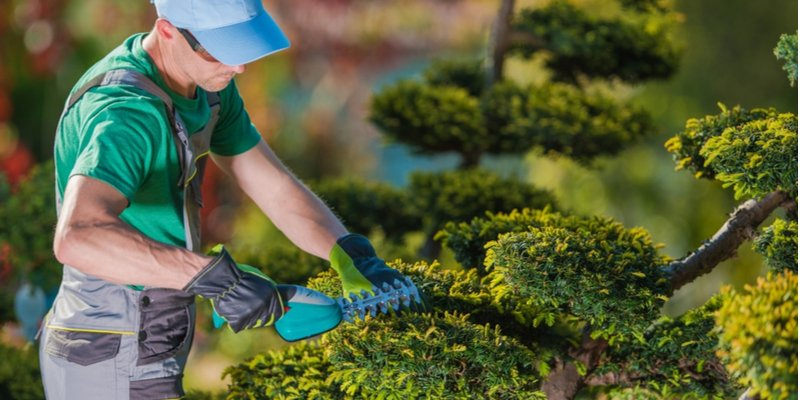 The Importance of Attractive Business Landscaping