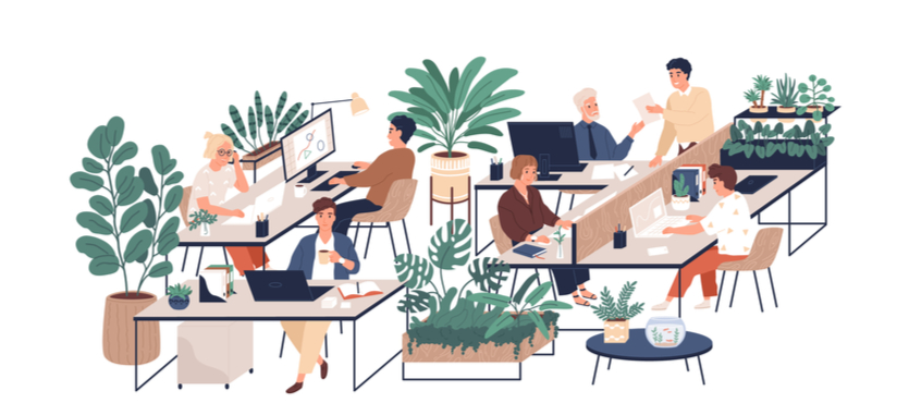Choosing Planters for Your Office