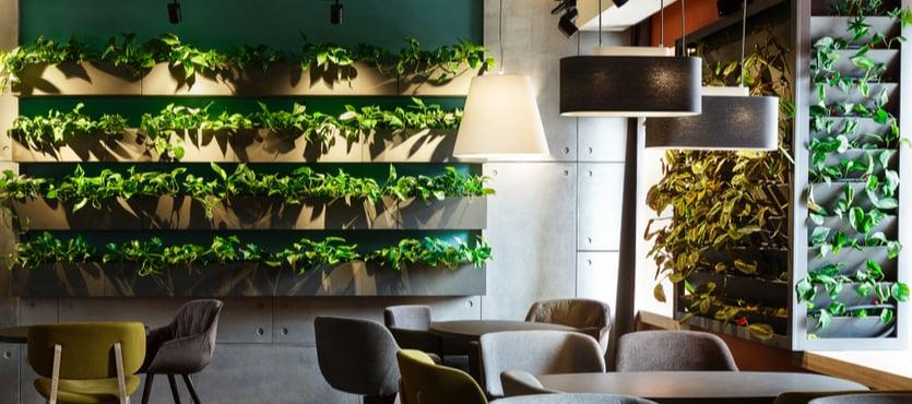 Indoor Planters in Restaurants